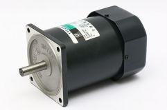 40W~140W单向感应电机