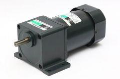 90W~120W三相微型齿轮减速电机