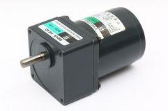 25W~30W单相齿轮减速电机