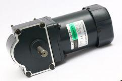 40W~90W单相微型涡轮减速电机